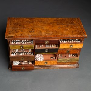 Antique collectors cabinet 3
